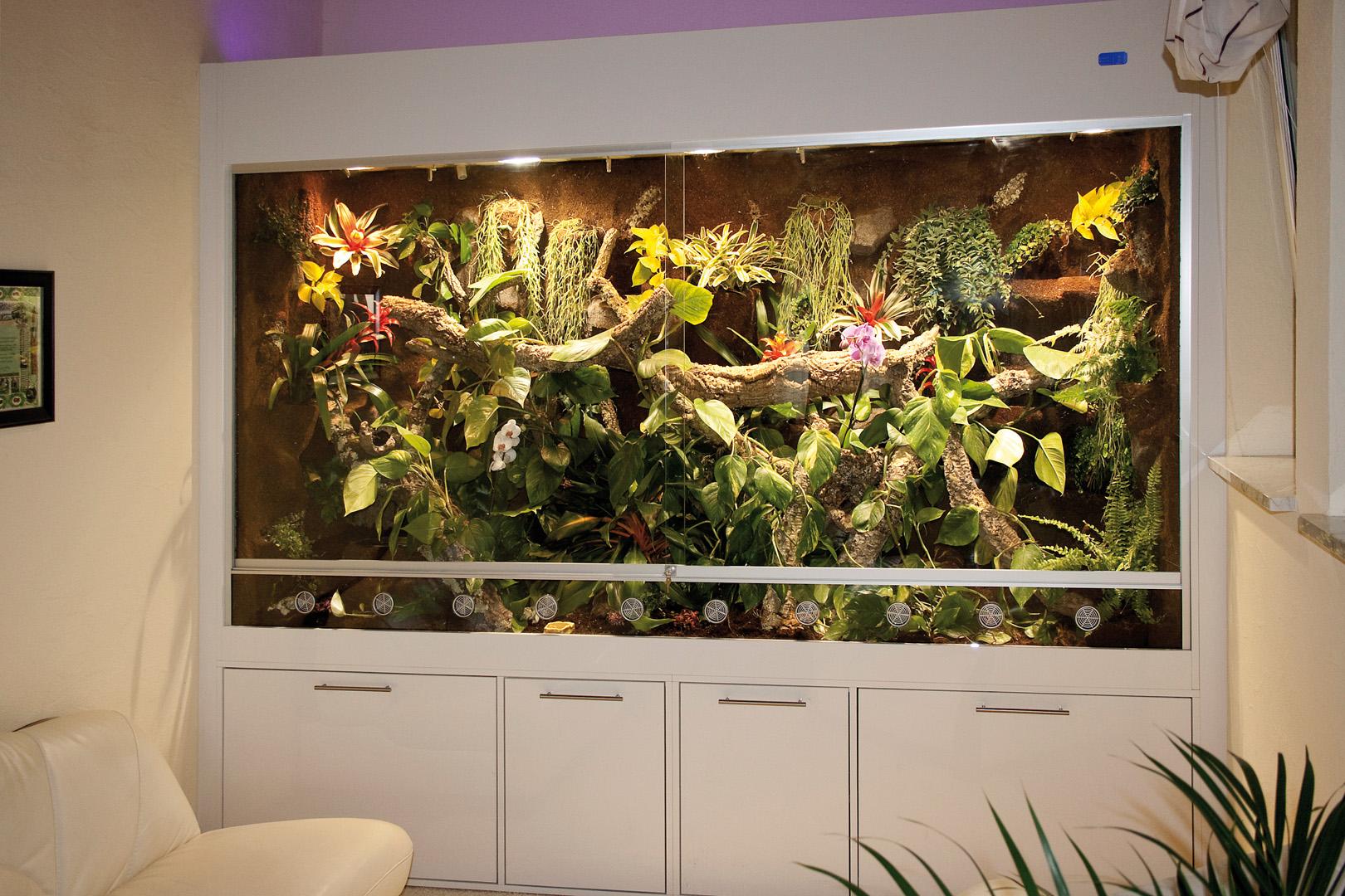 regenwaldterrarium f r smaragdwarane als schrankwand gebaut. Black Bedroom Furniture Sets. Home Design Ideas