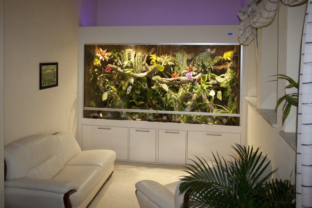 Luxusvillen für Reptilien - Terrarien der Sonderklasse: Regenwaldterrarium für Smaragdwarane