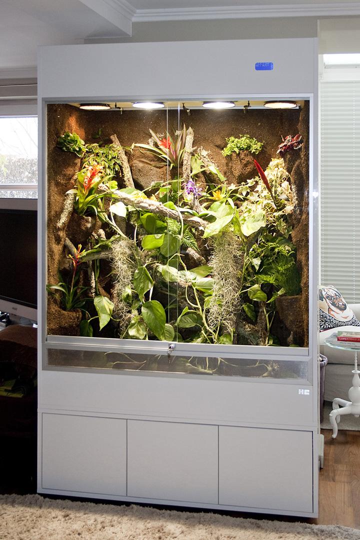 regenwaldterrarium f r cham leons typ r03 hier in acryl hochglanz. Black Bedroom Furniture Sets. Home Design Ideas
