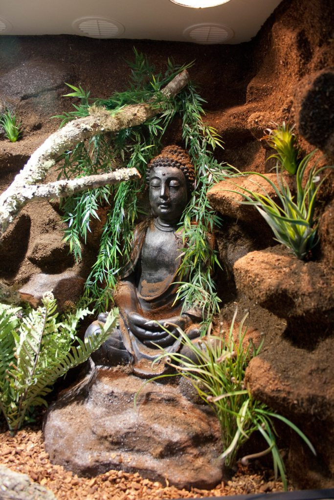 eingebauter Buddha in Felslandschaft