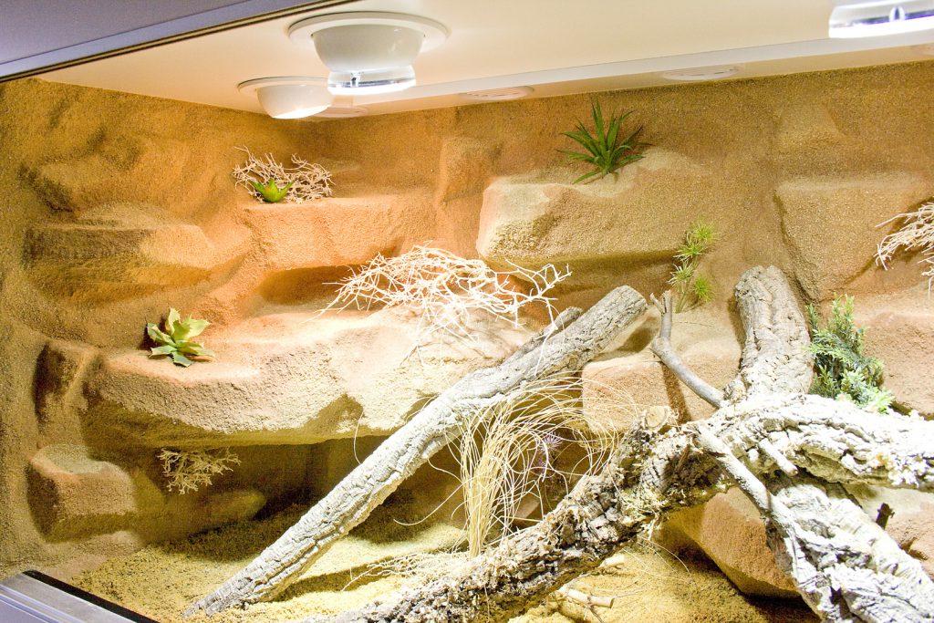 Wüsten-/Steppenlandschaft mehrfarbig sandsteinfarbig besandet mit Terracottastrukturen