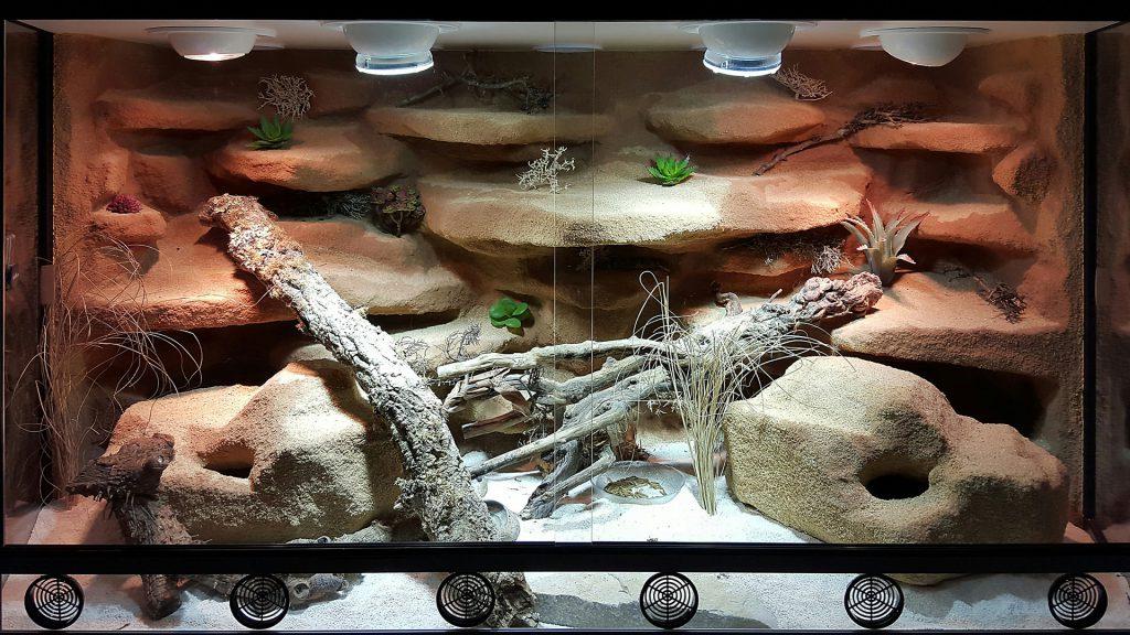 Wüsten-Steppenterrarium für Leopardgeckos in Panoramaform