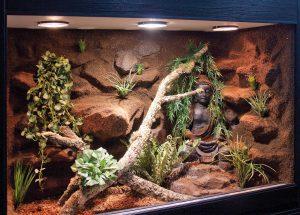 Halbfeucht-Waldterrarium für Schlangen mit Buddha-Skulptur Typ T07