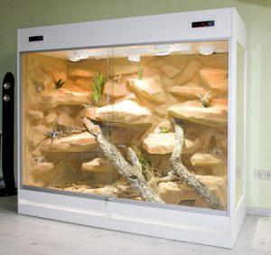 Wüsten-Steppenterrarium Typ S08, hier mit einem zusätzlichen Festglaselement