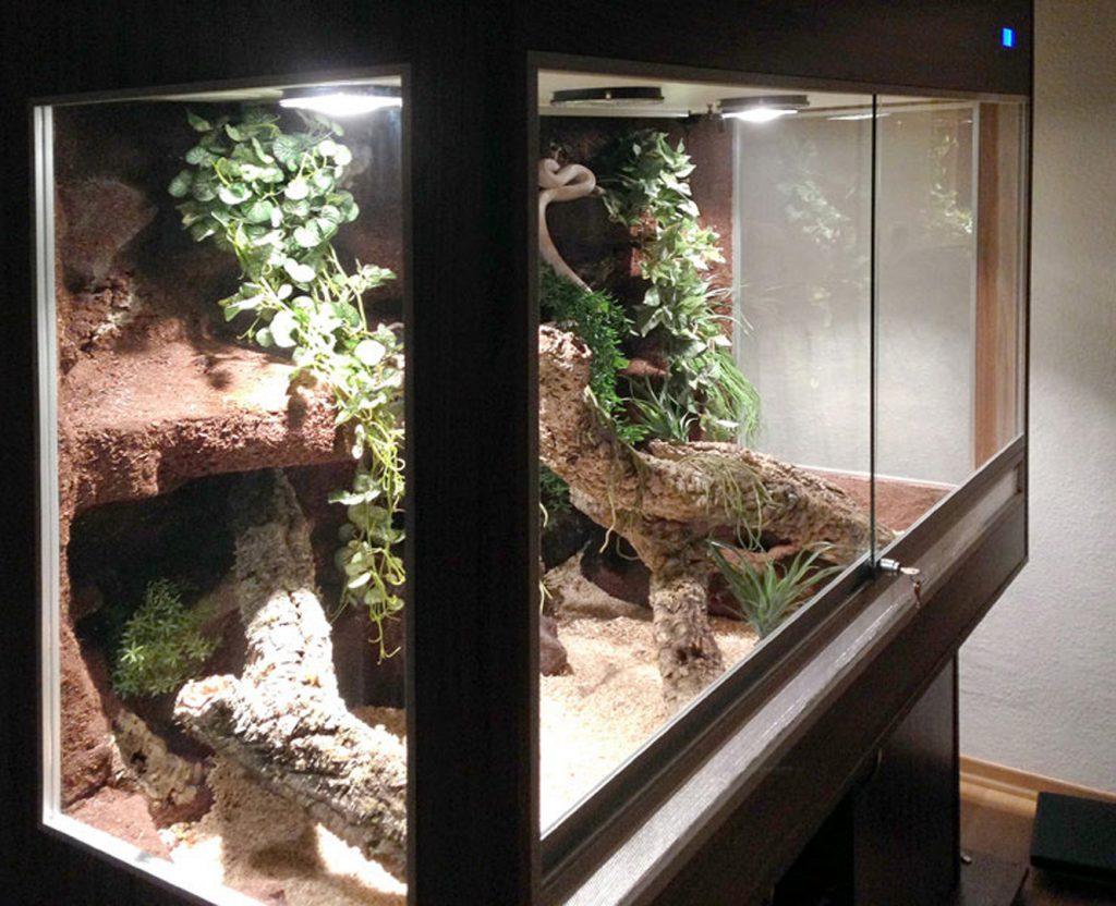 Halbfeucht-Waldterrarium für Schlangen Typ T09