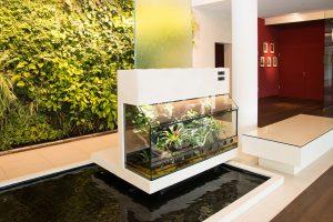 Paludarium für Pfeilgiftfrösche mit diagonaler Frontglasscheibe: hinter der Rückwand läuft über eine hohe Glasscheibe ein Wasserfall