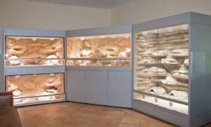 Terrarium für Dornschwanzagamen: Terrarienanlage komplett