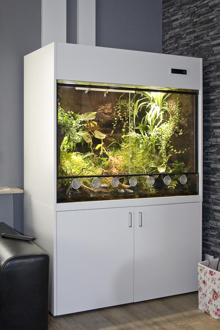 terrarien f r pfeilgiftfr sche typ p03 dendrobaten. Black Bedroom Furniture Sets. Home Design Ideas