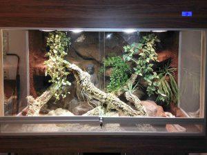 Halbfeucht-Waldterrarium für Schlangen Typ T09 mit seitlichen Festglaselementen