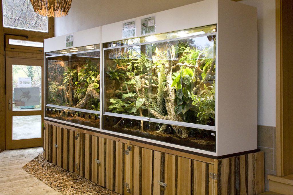 Terrarienwand: links Python, rechts Chamäleon, für den Tierpark Herborn