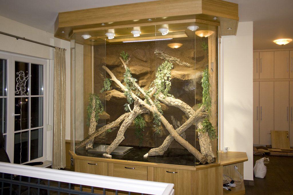 Landschaftseinbau in bestehendes Leguanterrarium