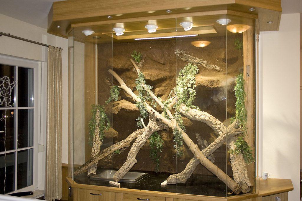 landschaftseinbau in bestehendes leguanterrarium f r. Black Bedroom Furniture Sets. Home Design Ideas