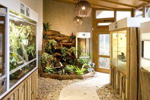 Unsere neu gestaltete Wasserfall-Landschaft mit integriertem Terrarium für den Tierpark Herborn