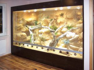 Wüsten-Steppenterrarium 290 cm lang