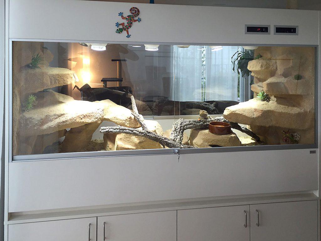 Terrarien als Raumteiler: Wüsten-/Steppenterrarium als Raumteiler