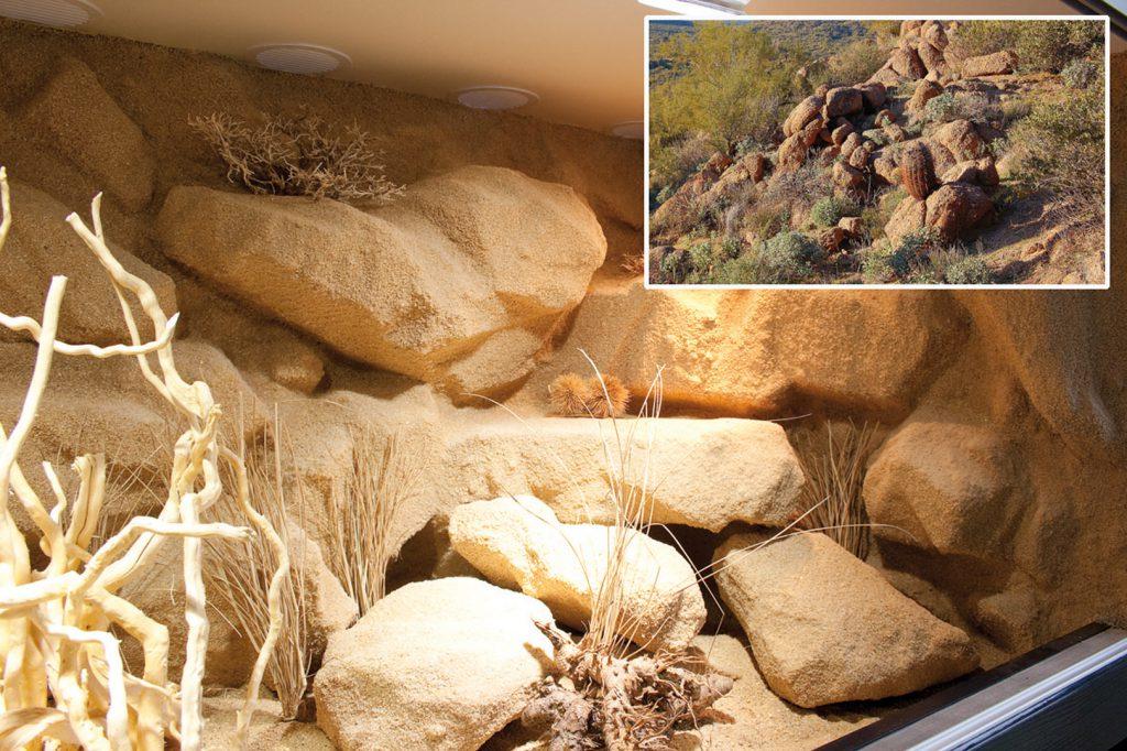 Landschafts-Vergleich Kingman/Mohave County - Arizona