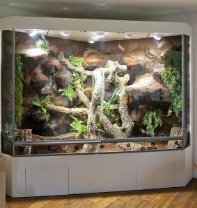 Deltaterrarium für einen grünen Leguan: Totale