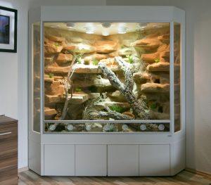 Terrarium in Deltaform für Leopardgeckos