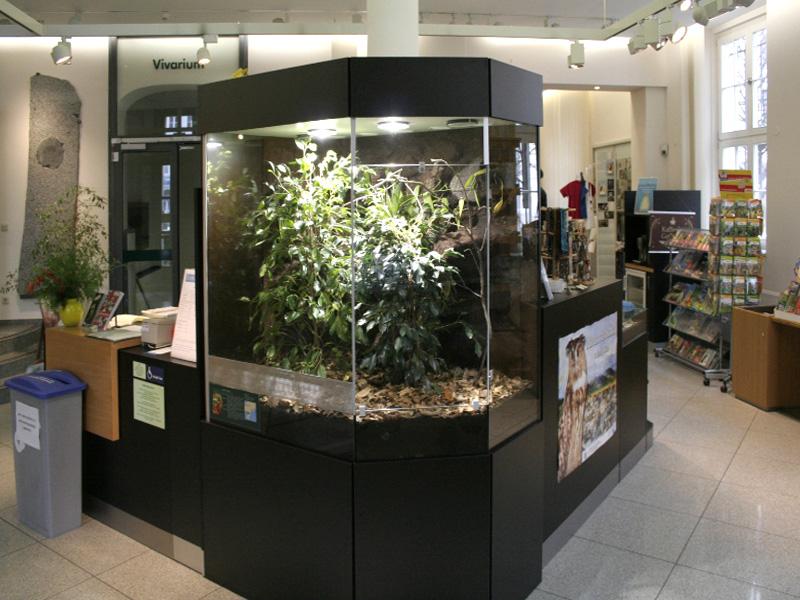 Regenwaldterrarium für das Senckenberg Naturkundemuseum Görlitz - im Foyer