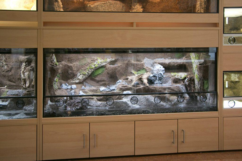 Terrarienwand für die Zooschule des Zoo Landau: Paludarium