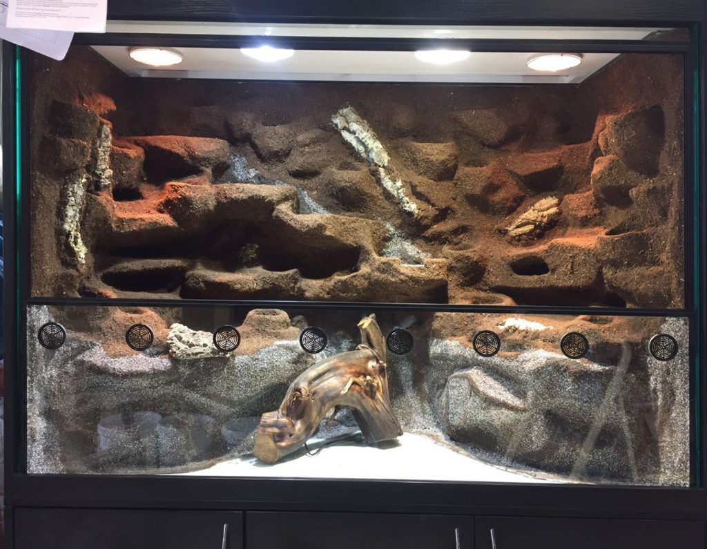 Paludarium für Taggeckos, Krabben, Frösche und Fische