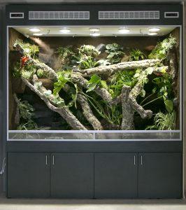 Regenwaldterrarium in BTH 220x90x180 cm