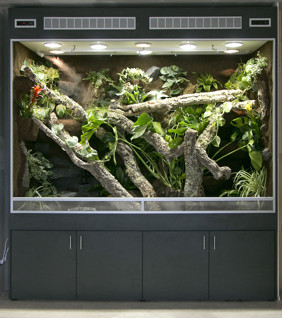 sehr gro es regenwaldterrarium in bth 220x90x180 cm. Black Bedroom Furniture Sets. Home Design Ideas