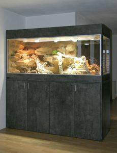 Terrarium als ein halber Raumteiler