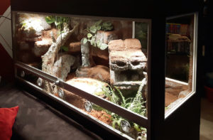 Schlangenterrarium im Aztekenstil
