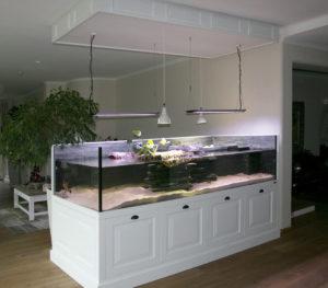 Wasserschildkröten Aqua-Terrarium