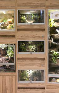 Terrarium für Insekten - Insektarium