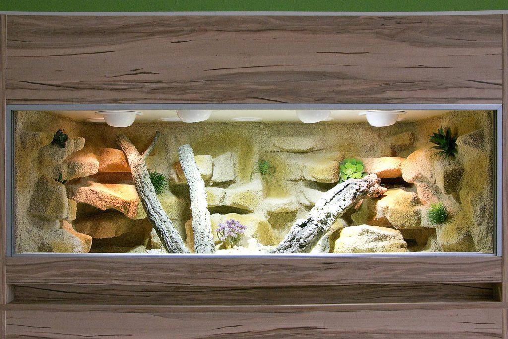 Terrarium für Leopardgeckos