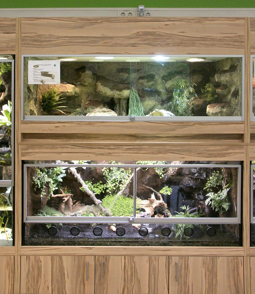doppelstöckiges Terrarium für Panzerschleiche + Salamander