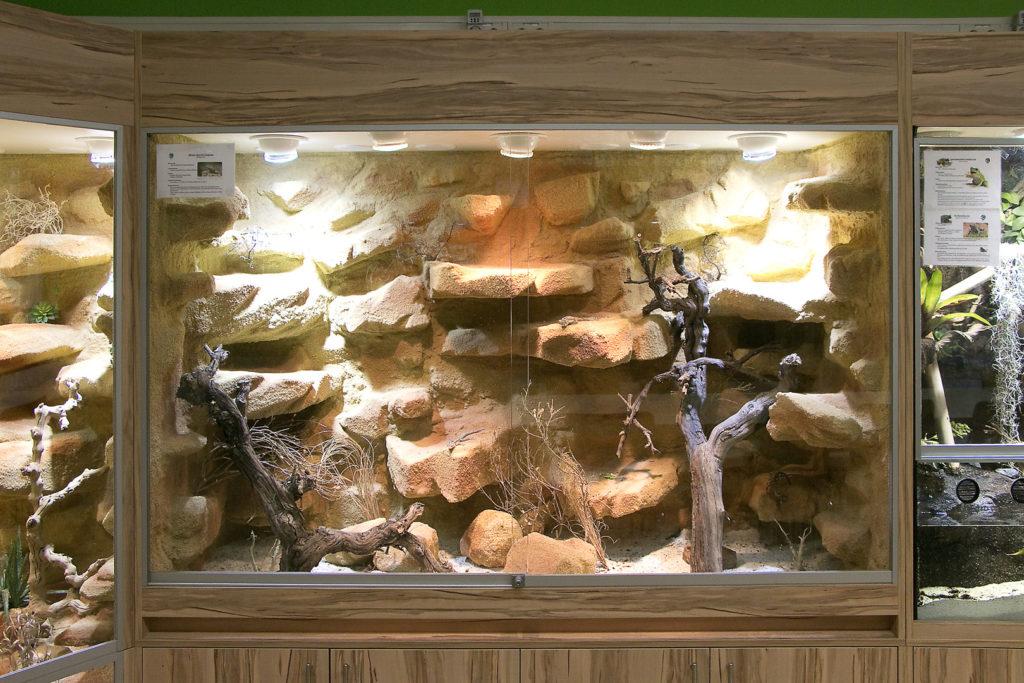 2m langes Wüstenterrarium für Stachelleguane
