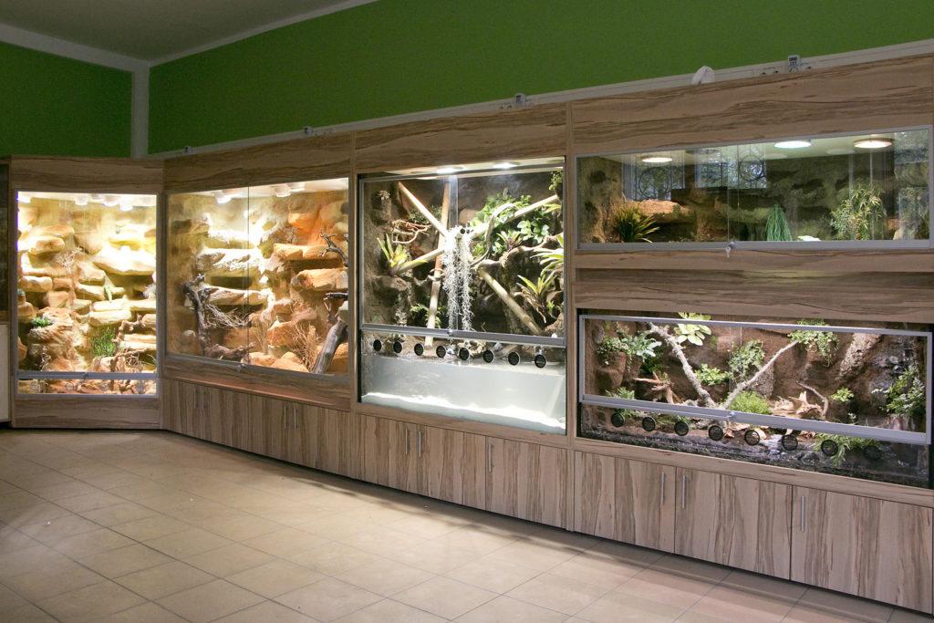 10m lange Terrarienwand mit 11 Terrarien für das Haus Natur und Umwelt