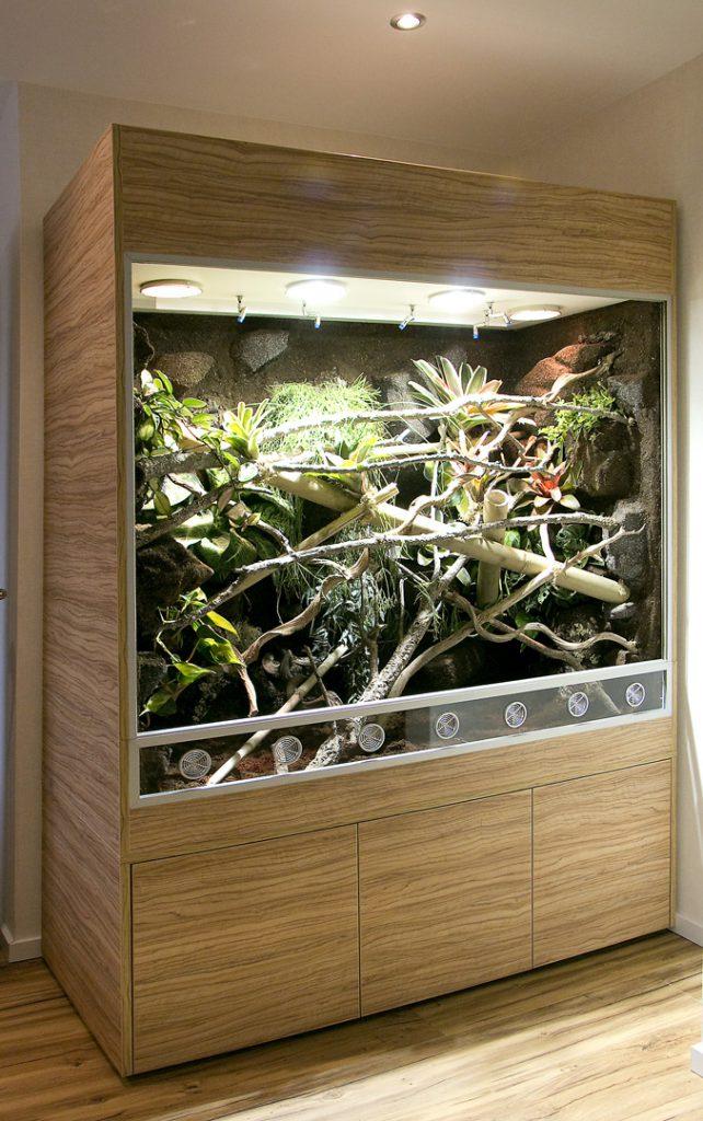 Regenwaldterrarium für ein Pantherchamäleon und Taggeckos