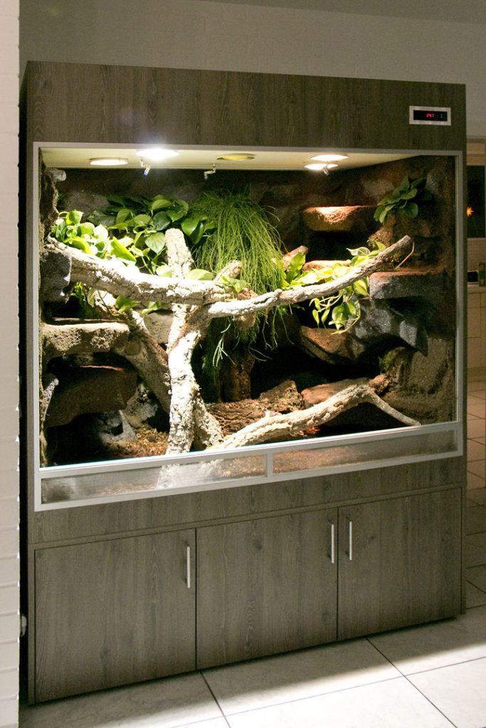 Terrarium für Boa Constrictor