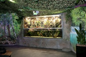 Aqua-Terrarium für Sea Life in Oberhausen