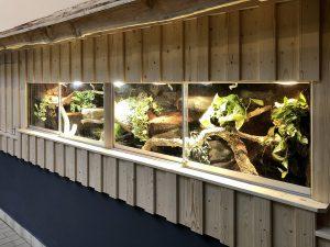 3 m langes Schlangenterrarium für den Vogelpark Schotten