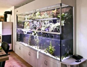 Aqua-Terrarium mit Abtrennung im Wasser