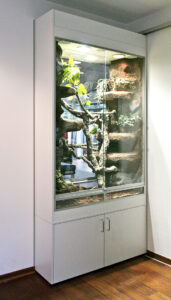 Terrarium als Raumteiler in einem Wanddurchbruch