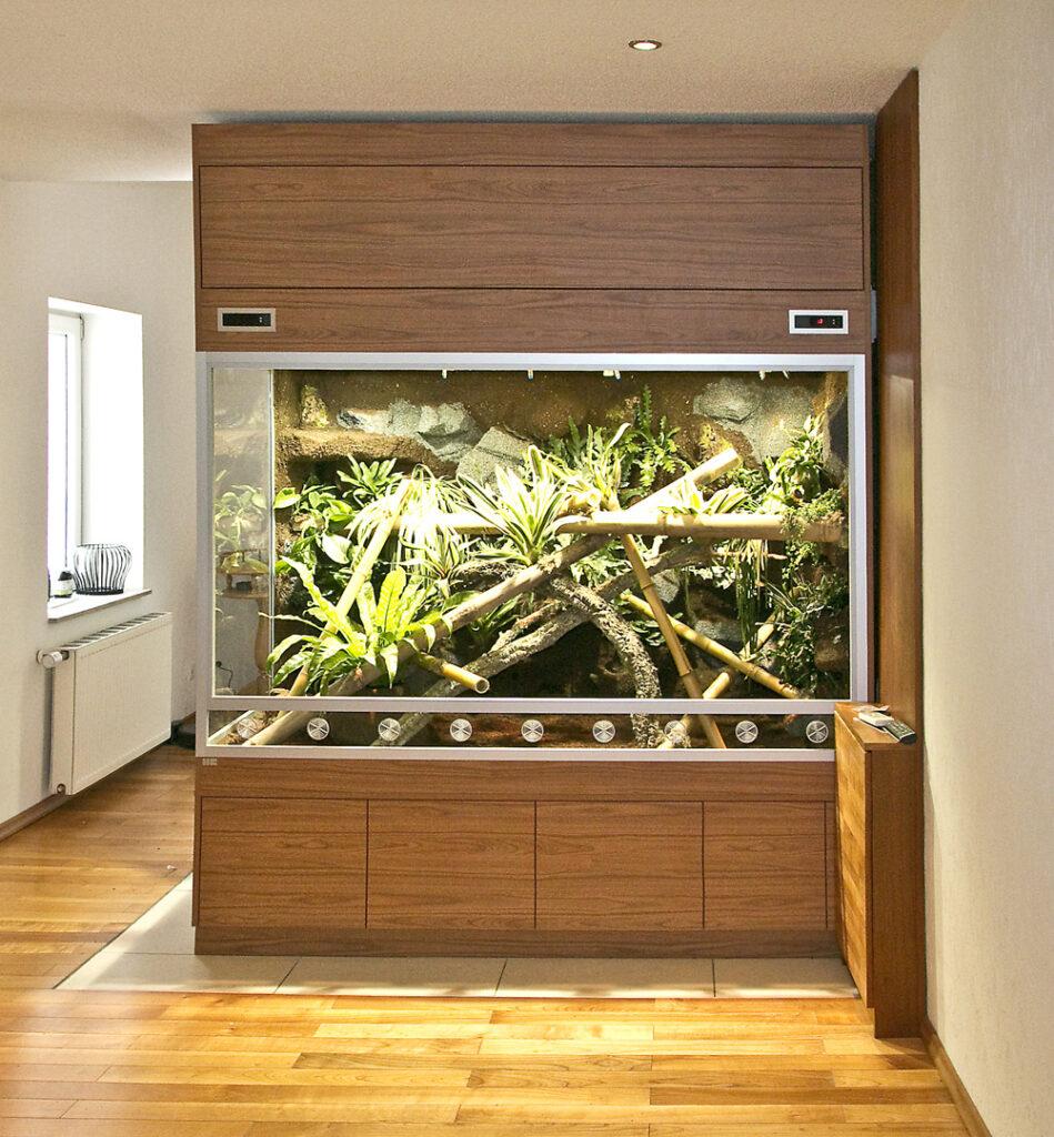 Großes Regenwaldterrarium für Phelsuma grandis - Taggeckos
