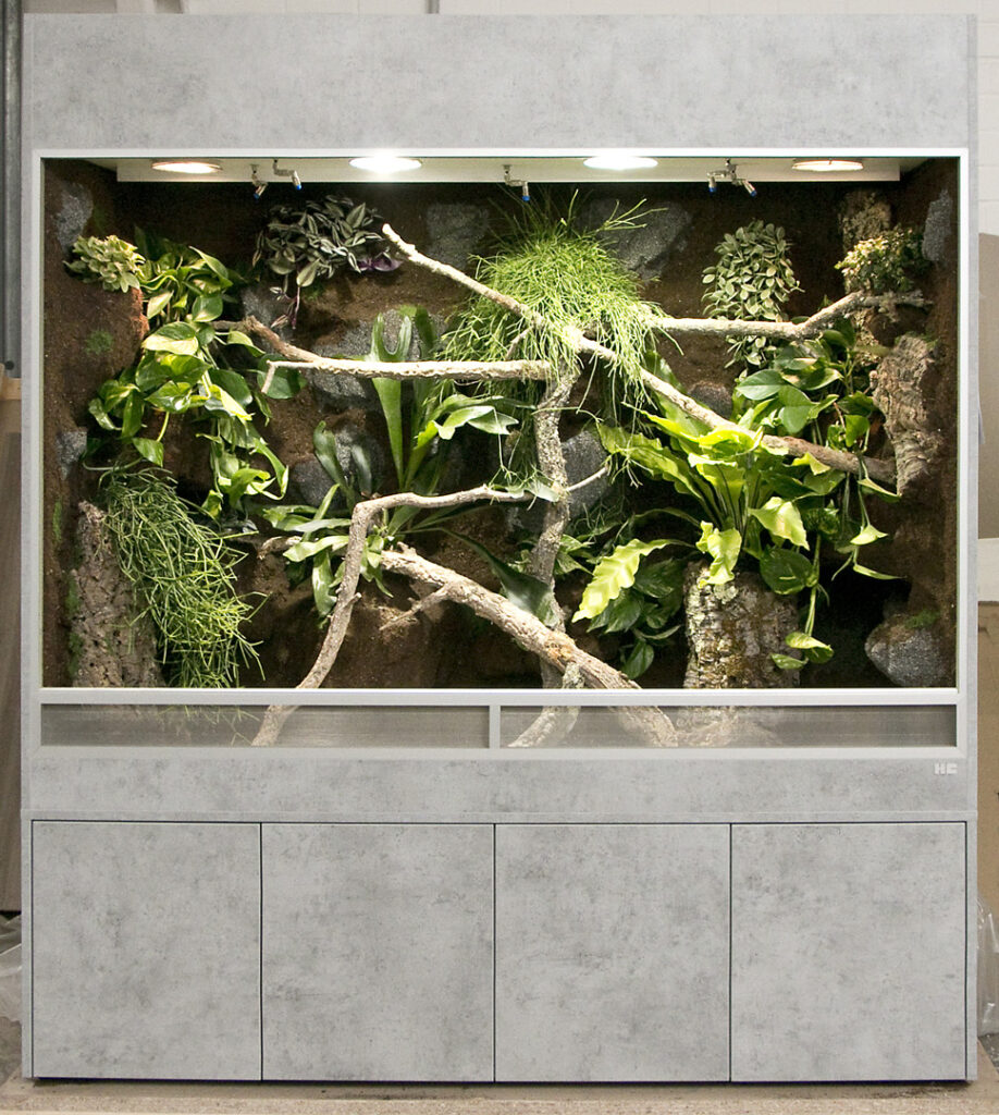 Regenwaldterrarium für einen grünen Baumpython